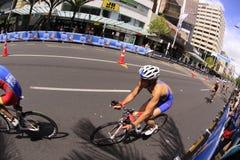 2012 ITU Grote Def. van Triathlon van de Wereld Stock Afbeeldingen