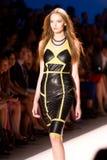 2012 kolekcj młynarki Nicole wiosna Zdjęcia Royalty Free