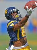 2012 le football de NCAA - Baylor @ WVU Image libre de droits