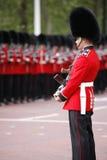 2012, marchando el color Fotos de archivo