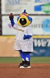 2012 Minor league baseball - macot madness Stock Photography