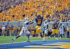 2012 NCAA橄榄球- Baylor @ WVU 免版税库存照片