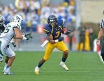 2012 NCAA橄榄球- Baylor @ WVU 库存图片