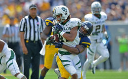 2012 NCAA football - Baylor @ WVU Royalty Free Stock Photography