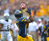2012 NCAA football - Baylor @ WVU Stock Photography