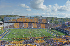 2012 NCAA-fotboll - Baylor @ WVU Arkivfoton