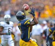 2012 NCAA-Fußball - Baylor @ WVU Stockfotografie