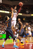 2012 NCAA-man basket - tempelOwls Royaltyfri Fotografi