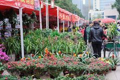 2012 Spring Festival Flower Market in Nanhai Royalty Free Stock Photo