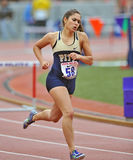 2012 Track and Field - Hurdles Royalty Free Stock Images
