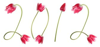 2012 Year. Title 2012 Year from beauteous pink tulips Stock Photo