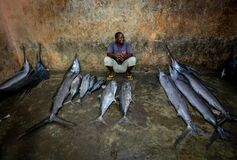 2013_03_16_Somalia_Fishing o Stock Images