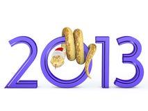 2013蛇 免版税库存照片