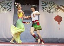 2013 Años Nuevos chinos Imagenes de archivo
