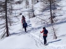 2013_Alpe Croslina Stock Photo