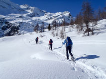 2013_Alpe Croslina Stock Image