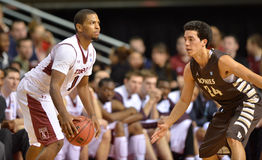 2013 basket-ball de NCAA - Temple-Bonaventure Images libres de droits