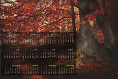 2013 Calendar on single page. 2013 calendar with nature image on a single page royalty free illustration