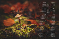 2013 Calendar on single page. 2013 calendar with nature image on a single page Stock Photography