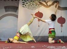2013 Chinesisches Neujahrsfest Lizenzfreie Stockbilder