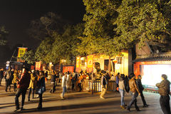 2013 festival di lanterna cinesi a Chengdu Fotografia Stock