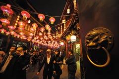 2013 het Chinese Festival van de Lantaarn in Chengdu Royalty-vrije Stock Foto's