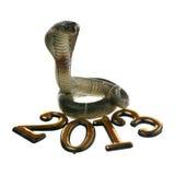 2013 - jaar van de Slang Royalty-vrije Stock Foto