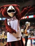 2013 NCAA Baseketball - de mascotte van de Uil Stock Afbeelding
