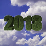 2013 New Year sign of green grass with blue sky Royalty Free Stock Image