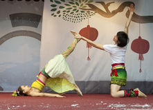 2013 nuovi anni cinesi Immagini Stock Libere da Diritti