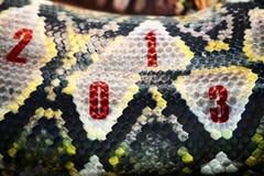 2013 - nuovo anno Immagini Stock Libere da Diritti