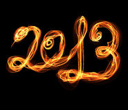 2013 snake fire sign Royalty Free Stock Image