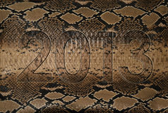 2013 snake skin. Background for calendar Royalty Free Stock Images