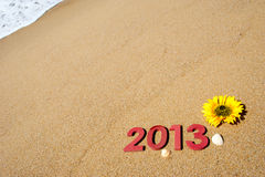 2013 sulla spiaggia Fotografia Stock