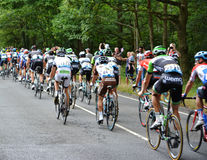 环法自行车赛2014年 免版税库存照片