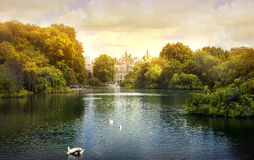 伦敦,英国- 2014年5月14日:-圣詹姆斯公园,在繁忙的伦敦中间的自然海岛 免版税库存照片