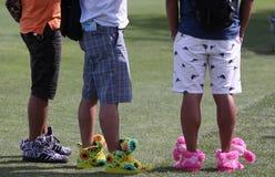 在阿那启发的滑稽的鞋子打高尔夫球比赛2015年 免版税库存图片