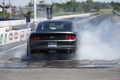 2015 mustang Stock Images