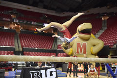 2015 NCAA-gymnastik - Maryland Royaltyfria Foton
