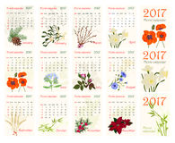 2017Romantic floral calendar with realistic beautiful flowers. Stock Photos
