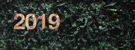 2019 happy new year wood texture number on Green leaves wall bac stock photography