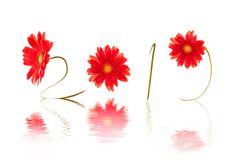 2019 written with red daisy flower stems, water reflection stock photos