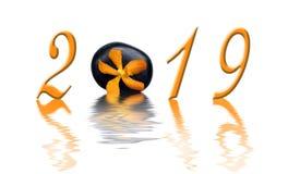 2019 zen orange orchid and black stone royalty free stock image