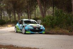 206 s1600s zlotnych Peugeot 2012 vidreiro Obraz Stock