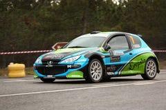 206 s1600s zlotnych Peugeot 2012 vidreiro Fotografia Stock