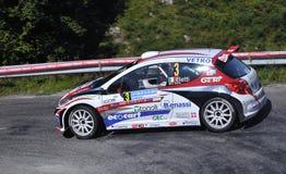 207 betti Luca Peugeot s2000 Obraz Royalty Free