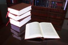21 lagliga böcker Royaltyfri Fotografi