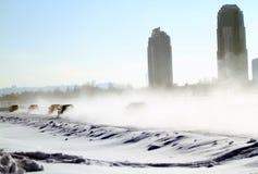 21. traditionelle Rennen-Sterne in Moskau Stockbild