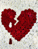 爱-红色心脏的标志由花(瓦伦蒂制成2月14日, 库存照片