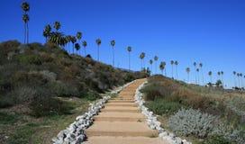 22ème Escalier de parc de rue Image libre de droits